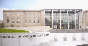 dc court of appeals